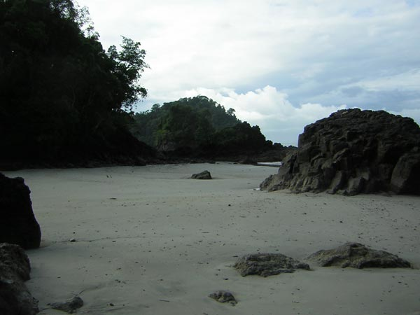 pacific-coast-manuel-antonio.jpg